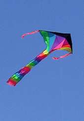 Kite flying over Chrissie Field, San Francisco